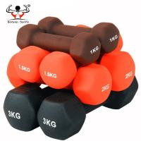Quality Strength Training Dumbbell For Ladies , Wear Resistant Cast Iron Dumbbells for sale