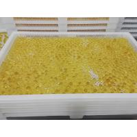 Quality Food Grade Plastic / Metal Tray And Trolly For Drying Capsule Candy for sale