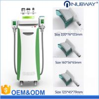 Quality 5 Handle,3 in 1 techology, Cryolipolysis+Cavitation+RF body slimming and shaping machine/fat freezing machine for sale