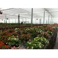 Quality 8m*4m Dimenison Garden Glass Greenhouse Easily Assembled Highly Durable for sale