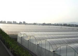 Quality Multi Span Hydroponic Tunnel Plastic Cover Greenhouse for sale