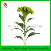 "Buy 32"" Decorative Artificial Flower Cockscomb Green at wholesale prices"