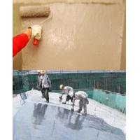 Quality Double Components Polyurethane Waterproof Coating for sale