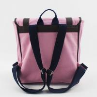 Hipster Wonderful Pink School Bags Dust Resistant For Teenagers' Gifts