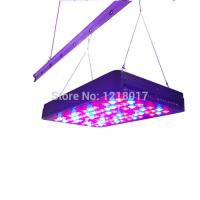 Quality Lighting Products,LED Grow Lights,cidly led light 5w for grow shop for sale