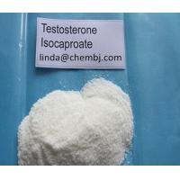 China 99% Injectable Bodybuilding Testosterone Steroids Hormone Testosterone Isocaproate CAS15262-86-9 for sale