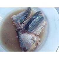Quality canned mackerel in NATURAL OIL for sale