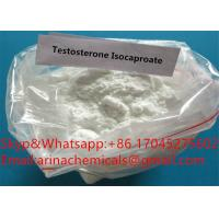 China Raw Steroid Powders Testosterone Isocaproate CAS 15262-86-9 Testosterone Steroid Hormone Test Crystalline Powder For Mus on sale
