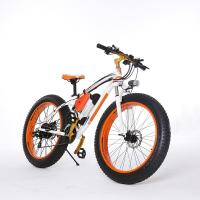 China High Speed 26 Inch Tires 2 Wheel Electric Bike Outdoor Off Road Dirt Electric Snowmobile Bikes on sale
