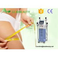 Quality 2016 Beauty Salon Cryolipolysi Machine Freezing Fat Cell Slimming Machine for sale