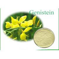 Buy cheap Genistein 446-72-0 Natural Gorse Root Plant Extract Powder Anti - Tumor product