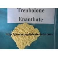 Quality Tren Enanthate Strongest Testosterone Steroid Trenbolone Enanthate Injection for sale