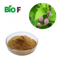 China Cosmetic Powdered Herbal Extracts Mimosa Pudica Powder For Skin Care Products on sale