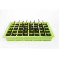Quality 2012 PS Nursery tray for seedlings HX35114 for sale