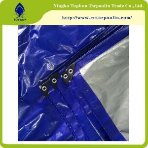 Buy cheap Plastic Tarpaulin Cover, PE Tarpaulin Sheet, Polyethylene Container Tarpaulin Tb011 from wholesalers