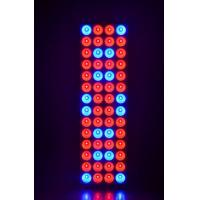China 120w 5FT Hydroponic Led Grow Light For Medical Plant / 2 Years Warranty on sale