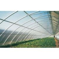 Quality 4mm 6mm 8mm Clear Greenhouse Polycarbonate Sheets For Construction Roofing for sale