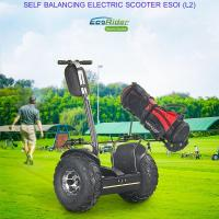 Buy cheap 2018 fashion 19 inch fat tire two wheel electric chariot,golf electric scooters from wholesalers