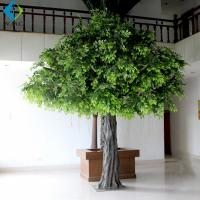 Tall Artificial Ficus Tree For Office Decoration 3m Height Environmentally for sale