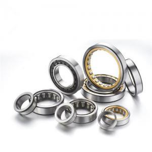 Buy cheap Chrome steel Single Row Cylindrical roller bearing , V1 / V2 / V3 from wholesalers
