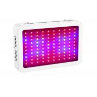 Quality LED Indoor Plant Grow Lights IP41 Protection Grade Low Energy Consumption for sale