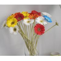 China artificial flowers african daisy on sale
