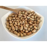 Quality Salted Flavor Roasted Soya Bean Snacks Green Snacks Food With BRC / KOSHER for sale