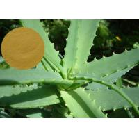 Quality Aloe Vera Extract Cosmetic Raw Materials Pure Natural Preventing Cancer / Anti - Aging for sale