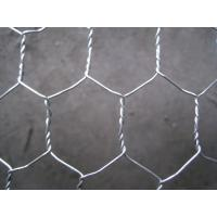 Quality Galvanized Chicken Mesh / Hexagonal Wire Mesh Export to South Africa for sale