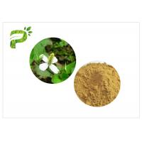 Quality Traditional Plant Extract Powder Inflammation Houttuynia Cordata Thunb Extract Powder for sale