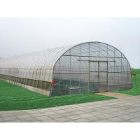 Quality Traditional Polycarbonate Tunnel Greenhouse Snow Load 0.45KN/M2 Rainfall 90mm/H for sale