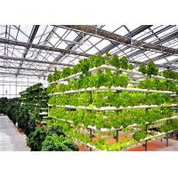 Quality 4m Bay Width Hydroponic Greenhouse Strong Ability To Resist Bad Weathers for sale