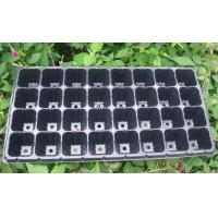 Quality New-style nursery seedlings tray for seed HX35112 for sale