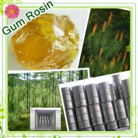 Quality Farwell Pinus Massoniana ww grade Gum Rosin for sale