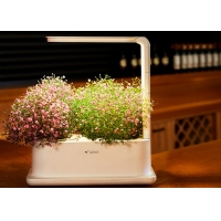 Quality 3pcs Plant PP Home Hydroponic Growing Systems With Led Light for sale