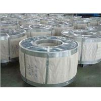Quality Hot Dipped Galvanized Steel Coil High Quality (Factory) for sale