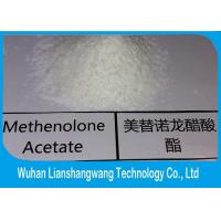 Quality Cas 57-85-2 White Powder Injecting Anabolic Steroids Testosterone Propionate for sale
