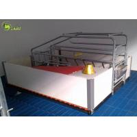 Automatic Swine Farrowing Crates Stainless Steel Drinker Cast Iron Floor