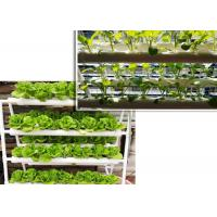 Quality Double Side Tube Soilless Cultivation , NFT Hydroponic Pipes For Fruit Vegetables for sale
