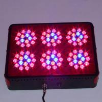 Quality china made hydroponics led grow light factory cidly led 6 with full spectrum for sale