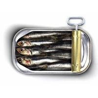 China frozen sardines(head off and gutted off) on sale