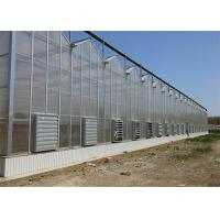 Quality Shouguan Agricultural Glass Greenhouse Hot Dip Galvanized Rust Prevention Design for sale