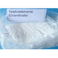 Bulk Steroids Testosterone Enanthate CAS 315-37-7 For Asthma Muscle Gain Primoteston for sale
