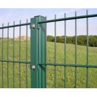 Quality Double Wire Fence Panel for sale