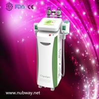 Quality Newly-designed!!! The most featured Cryolipolysis Slimming Product Green Vertical for sale