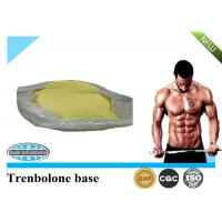 Quality 99% Trenbolone Steroid CAS 10161-33-8 Trenbolone Base for Muscle Building for sale
