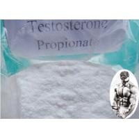Quality Muscle Building Pre - Mix Testosterone Propionate Injection CAS:57-85-2 100mg/ml 200mg/ml for sale