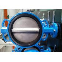 Quality PTFE Lined Centric Butterfly Valve Self Lubricated Shaft Bear ATEX Wafer Type Butterfly Valve for sale