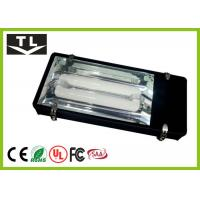 Quality Outdoor High Power Induction Tunnel Lighting AC 110V - 240V IP65​ For Roadways for sale