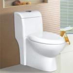 Quality unique design bathroom ceramic water closet one-piece toilet bowl 98123 for sale